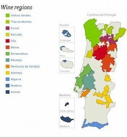 Portugals Vinregioner Shop Born Wine